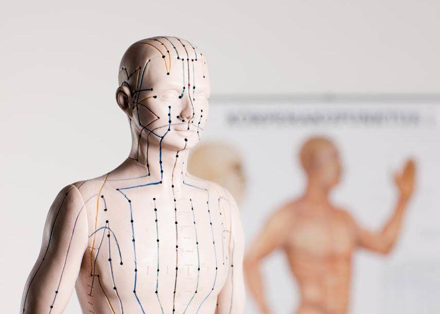 Akupunktur - ein Schwerpunkt in der Praxis für Orthopädie und Osteopathie Dr. Christine Meyer in Meppen